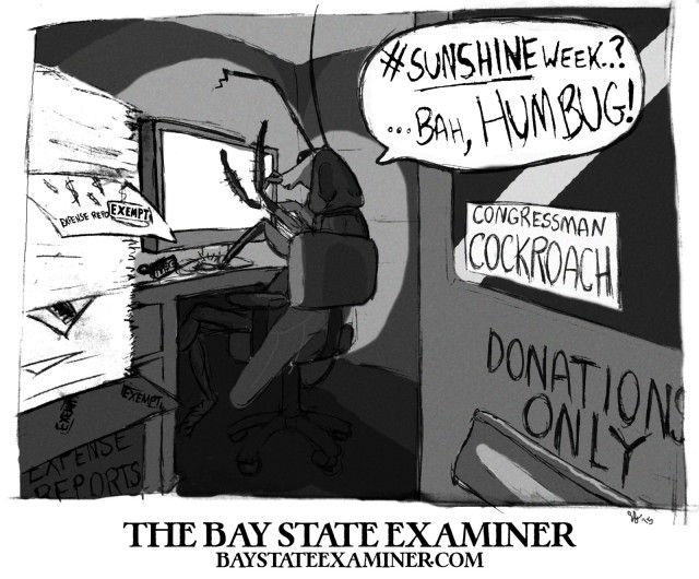 The Bay State Examiner